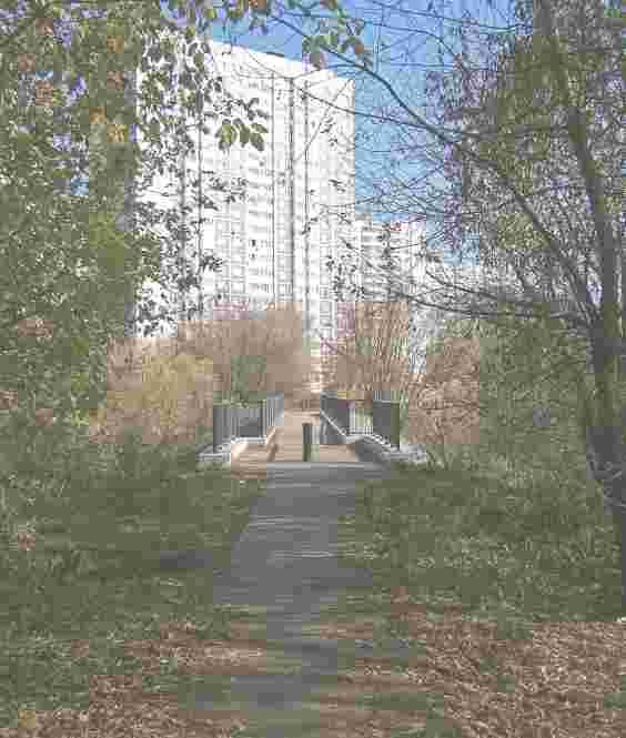 Вид со стороны района Отрадное на бывший ж /д мост